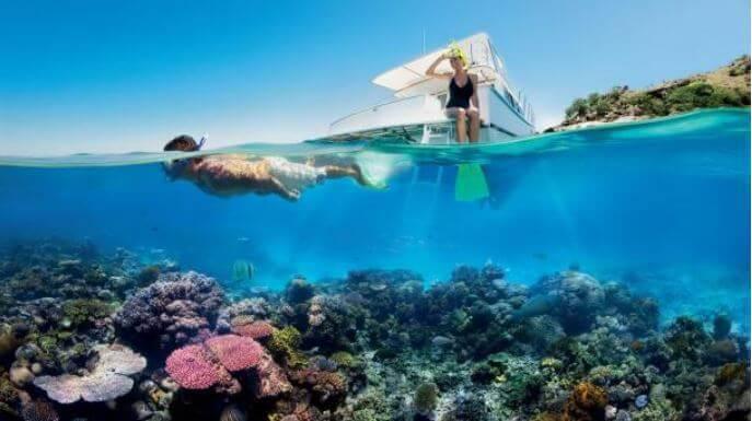 la grande barriera corallina documentario