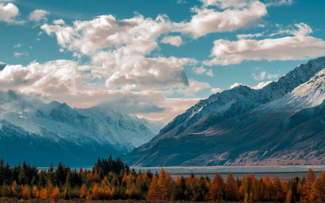 Panorama Nuova Zelanda