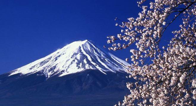 Ciliegi e Monte Fuji, Giappone