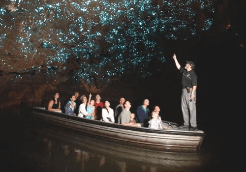 Nuova Zelanda… alla scoperta della grotta di Waitomo