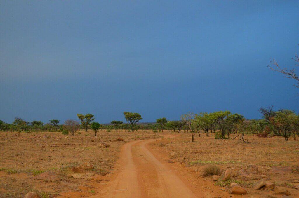 Paesaggio Riserva Privata Sudafrica