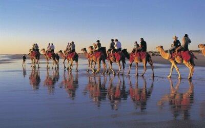 Western Australia: selvaggio, autentico e sconfinato….
