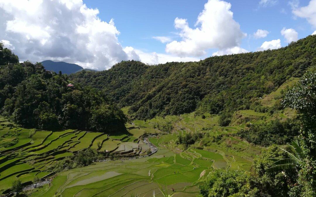 Alla scoperta della Cordillera filippina – Banaue e le sue risaie patrimonio UNESCO