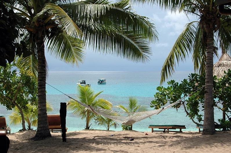 50fd5e1d1129a-octopus_resort