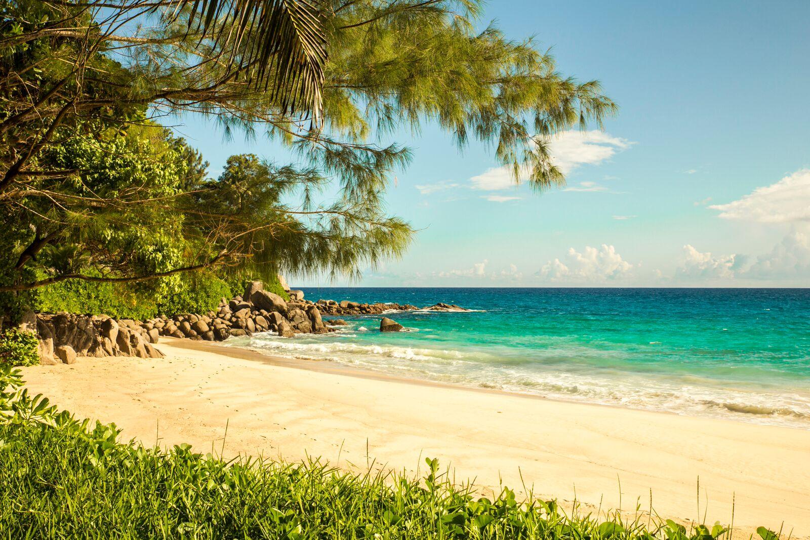 5596a31d3d820-carana_beach