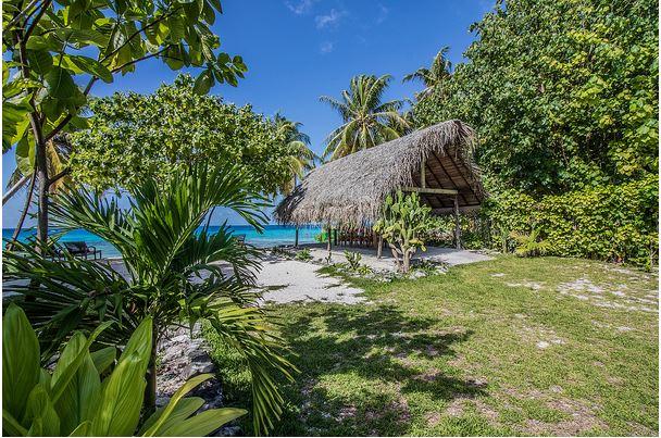 5a994324b6f2e-coconut_lodge