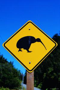 Kiwi, Nuova Zelanda