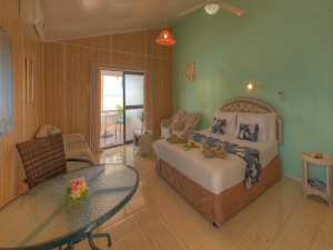 Rino-s-Beach-Bungalows-Beachfront-Deluxe-Unit