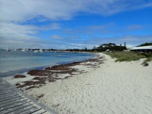 Rottnest Island_Perth_Australia_KiaOraviaggi
