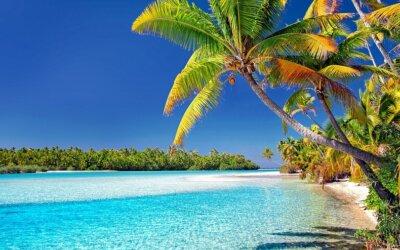 Isole Cook: il paradiso terrestre delle Perle Nere