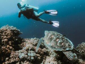 diving_maldive_kiaoraviaggi