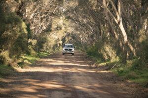 Kangaroo Island_australia_kiaoraviaggi