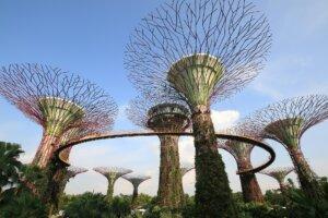 Singapore_Kiaoraviaggi