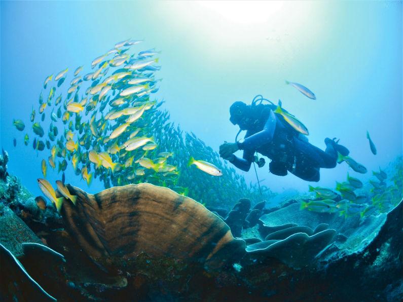 Palawan - Miniloc Diving_
