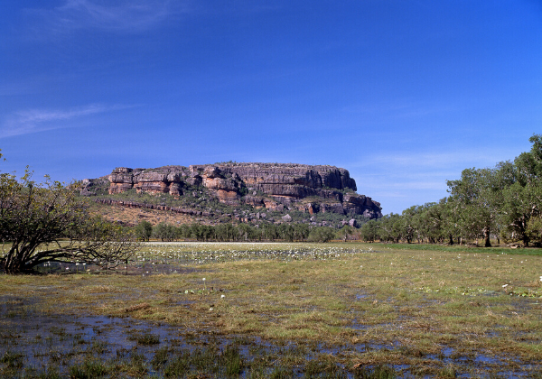 Kakadu National Park fly and drive australia