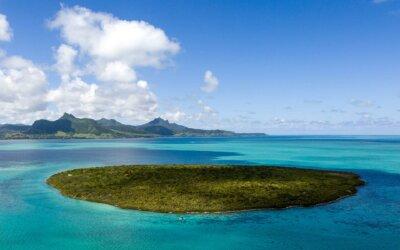 Mauritius: l'incidente della petroliera e le conseguenze per l'ecosistema e il turismo
