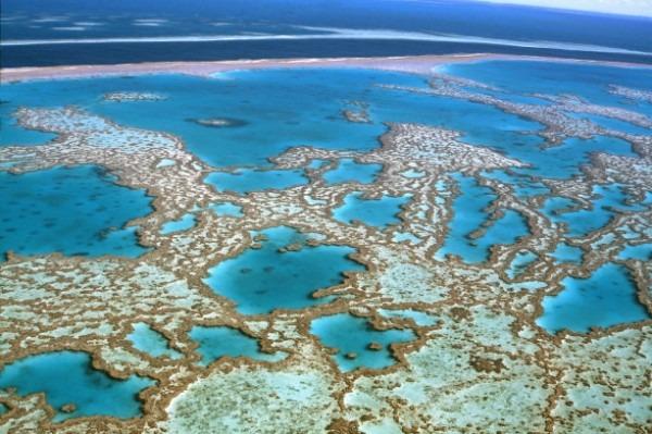 Australia Grande Barriera Corallina Great Barrier Reef Queensland